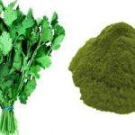 Klorela – enocelični organizem z neverjetnimi učinki