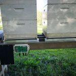 Precizna tehtnica nam omogoča natančno tehtanje čebelnjaka